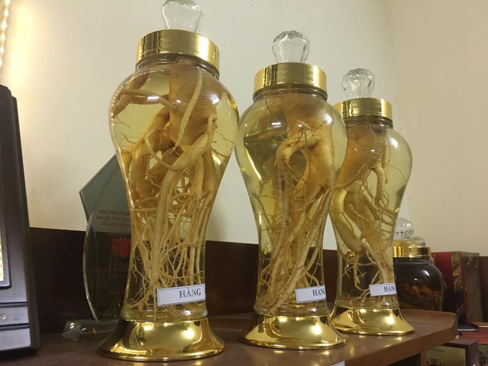 Nhân sâm tươi ngâm rượu Hàn quốc tại củ chi