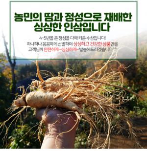 Những ai không nên dùng nhân sâm Hàn Quốc